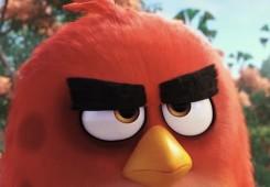 angry birds movie 245x170