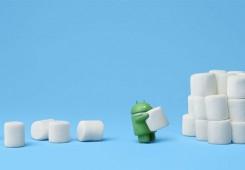 marshmallow 245x170