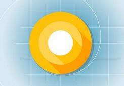 android o developer 245x170
