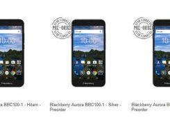 blackberry aurora 245x170