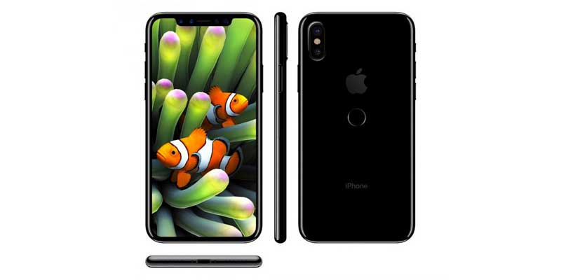 Body Size 7s peek iPhone and iPhone Plus 8