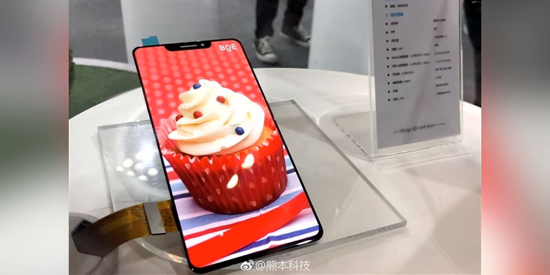 Manufacturer Screen China OLED Panel Makes Successful ala iPhone X