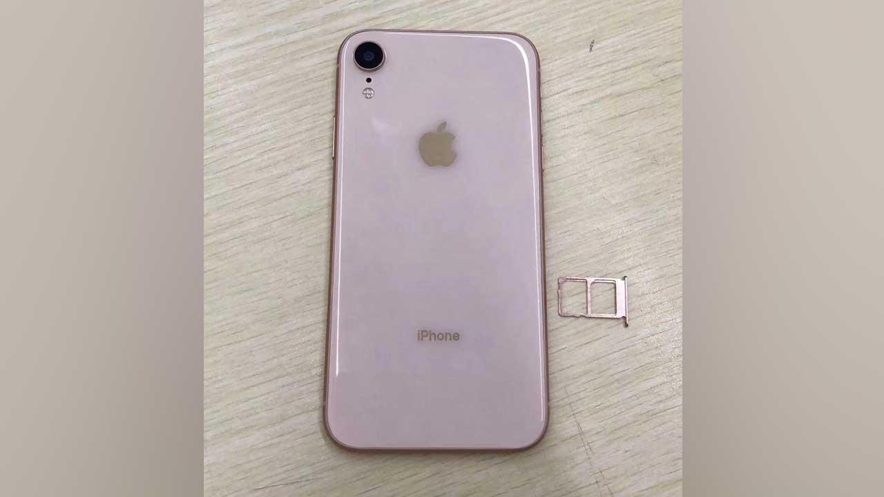 iPhone 6.1 SIM Card